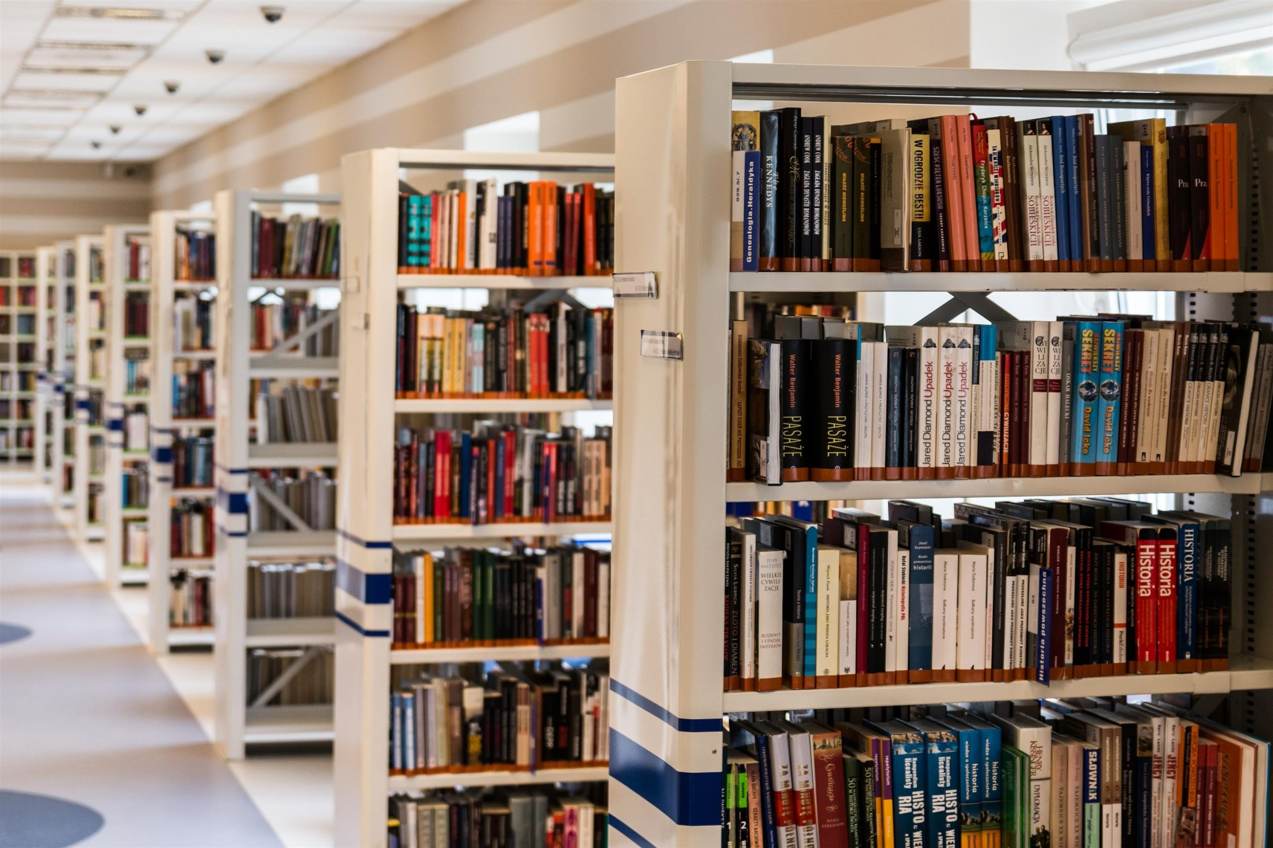 Successfully adopting AI in the world of Dutch libraries